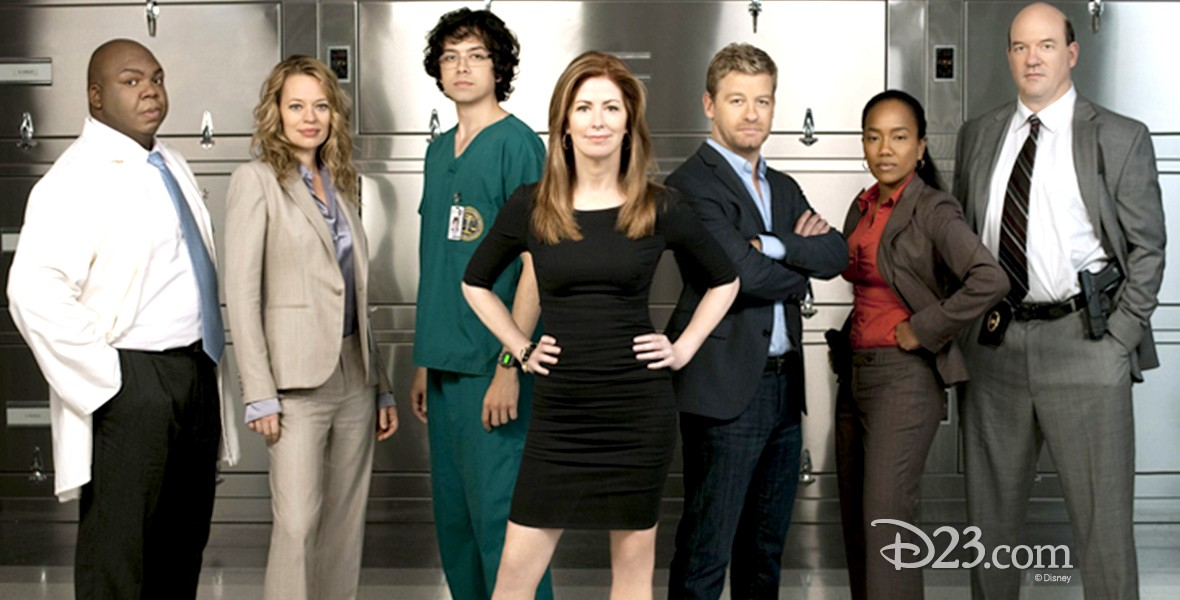 cast of Body of Proof television show: Dana Delany, Jeri Ryan, Geoffrey Arend, John Caroll Lynch, Windell Middlebrooks, Nic Bishop, Sonja Sohn