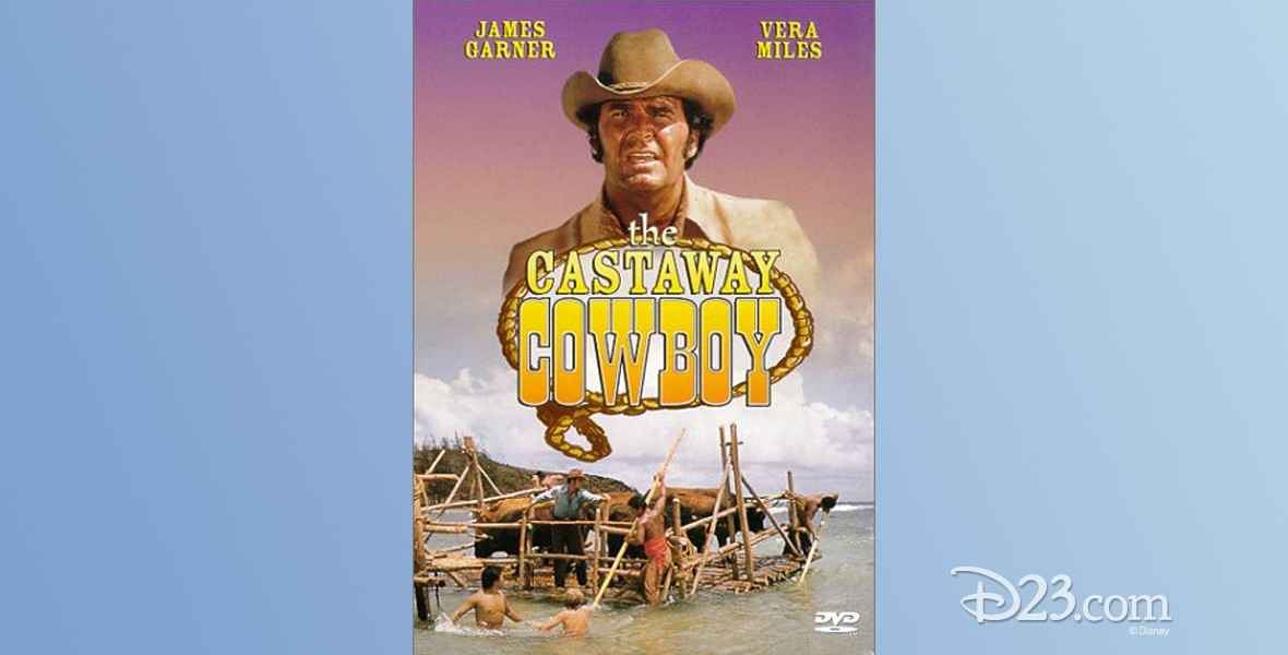 poster for movie The Castaway Cowboy