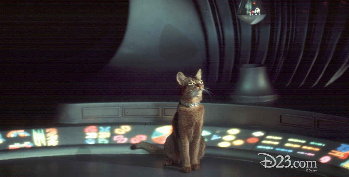 production photo from movie The Cat from Outer Space (film) featuring a cat seated on a spaceship control panel