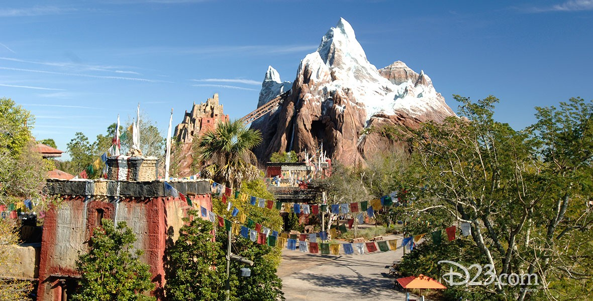 photo of Expedition Everest attraction in Disney's Animal Kingdom