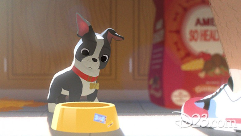 still from animated short film Feast featuring small dog looking at its empty dog bowl
