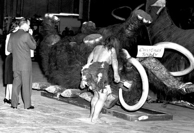 photo of giant Mammoth legs in the air, marked with a sign Christmas Turkey and a life-size cave man figure standing near it