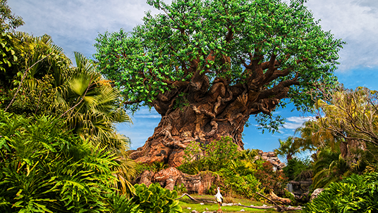 The Tree of Life serves as the centerpiece of Disney's Animal Kingdom Park.