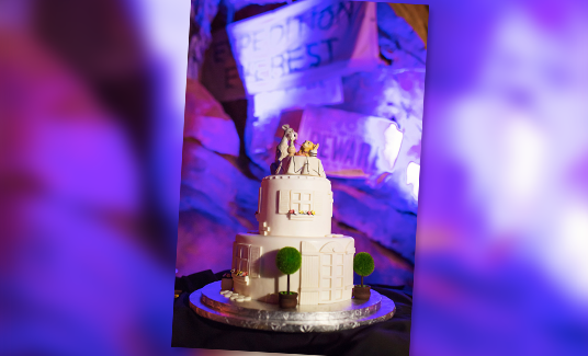 060215_DisneyWeddingCakes-feat-9