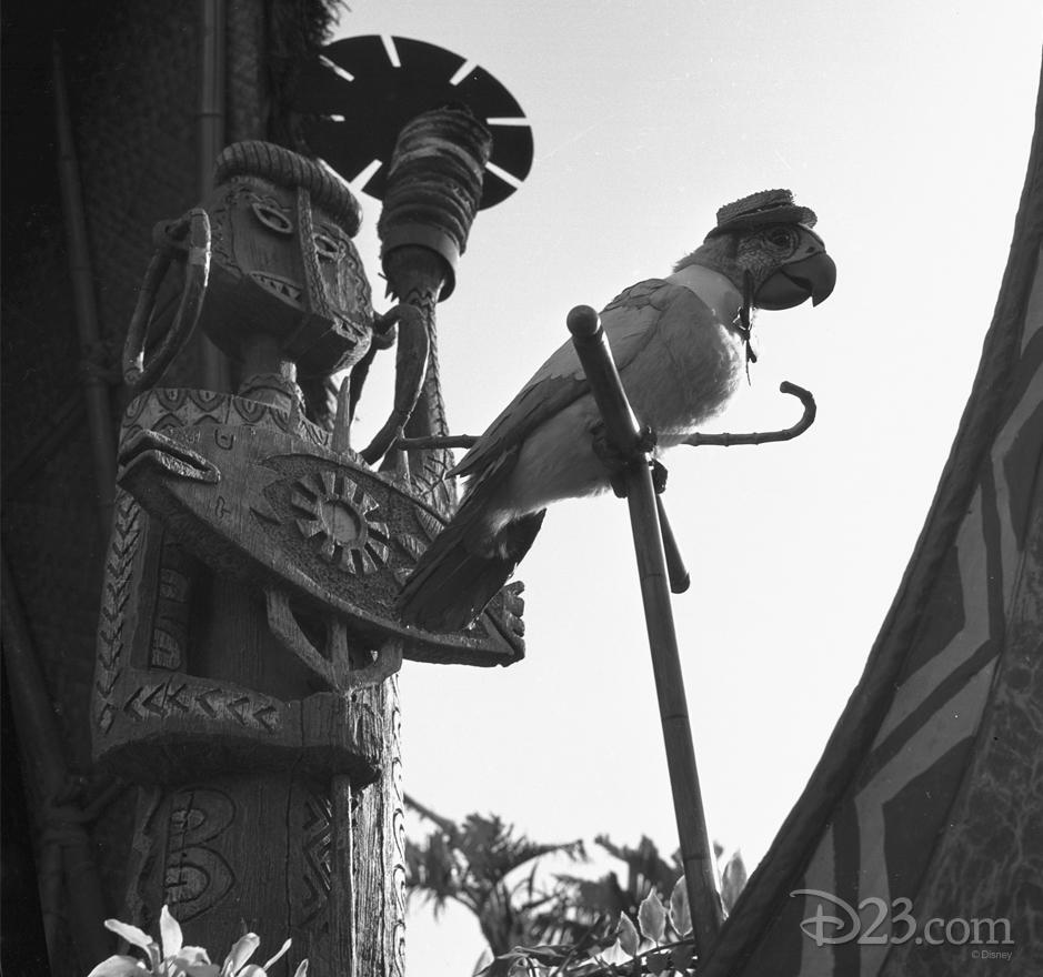 black and white photo of Jose Parrot outside enchanted tiki room