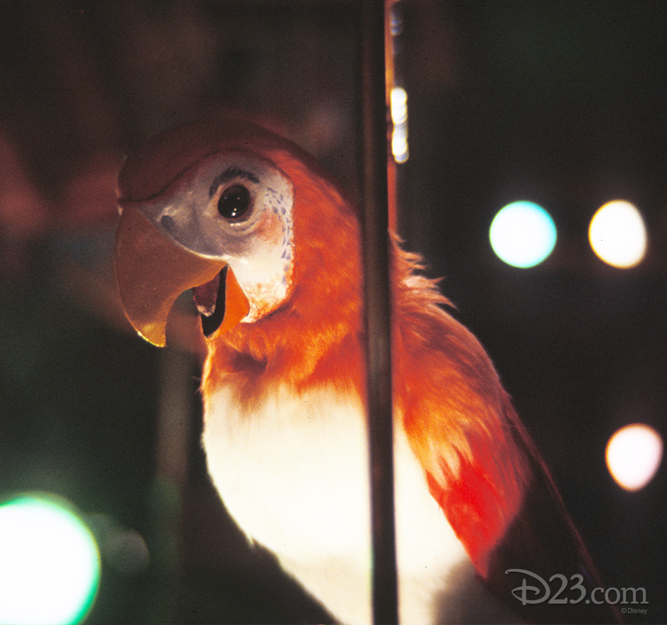 close-up photo of audio animatronic(R) parrot at the enchanted tiki room