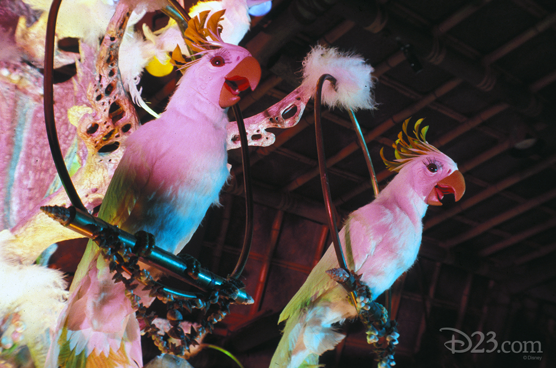 photo of two talking or singing birds at the enchanted tiki room