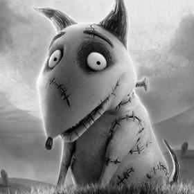 Fido in Tim Burton's Frankenweenie