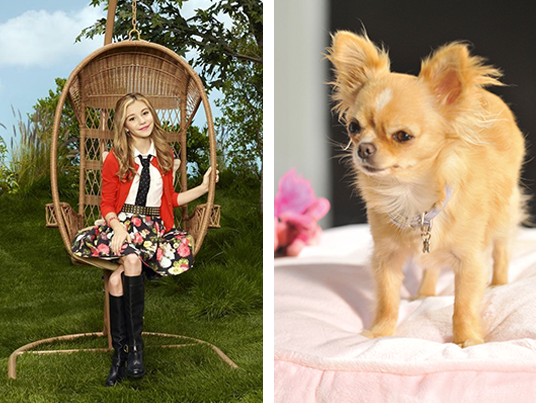 G Hannelius loves Chloe from Beverly Hills Chihuahua