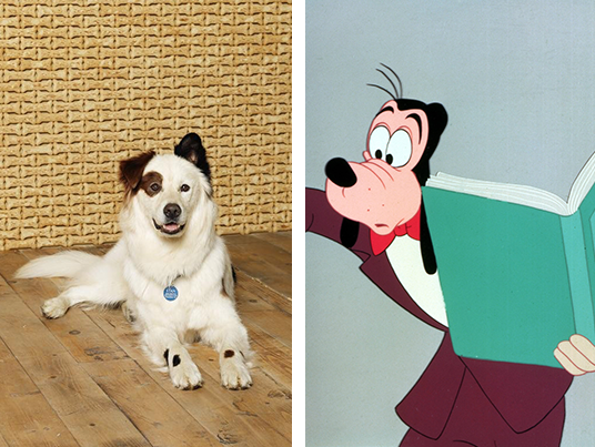 Stephen Full, the voice of Stan, says he is most like Goofy