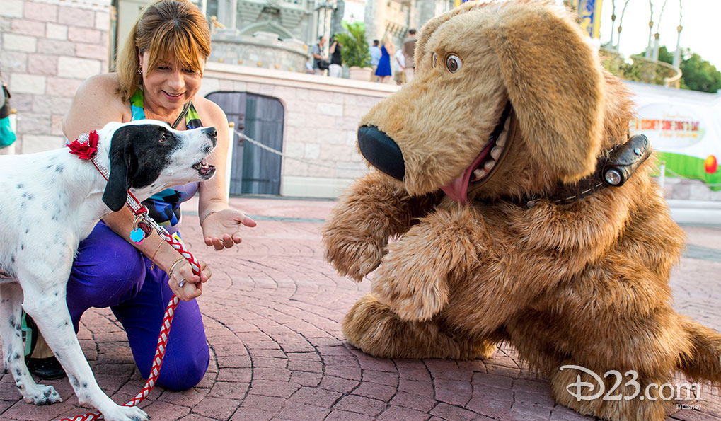 Joined by her owner Mejay Aguerre, Lily, a 2-year-old Labrador-Catahoula, meets Dug, from the Disney-Pixar film <em>Up</em>.