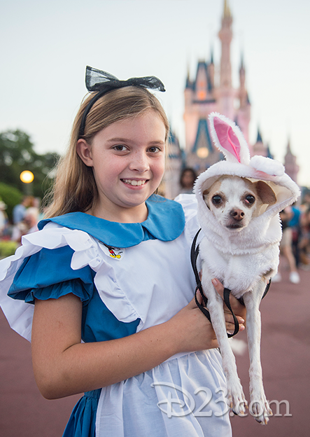 A dog and its owner show off their Disney Side dressed as the White Rabbit and Alice.