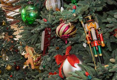 The Disneyland Christmas Tree