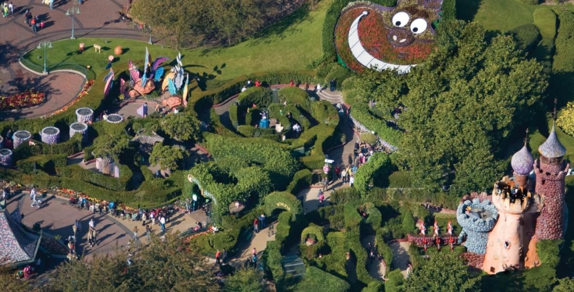 Alice S Curious Labyrinth D23