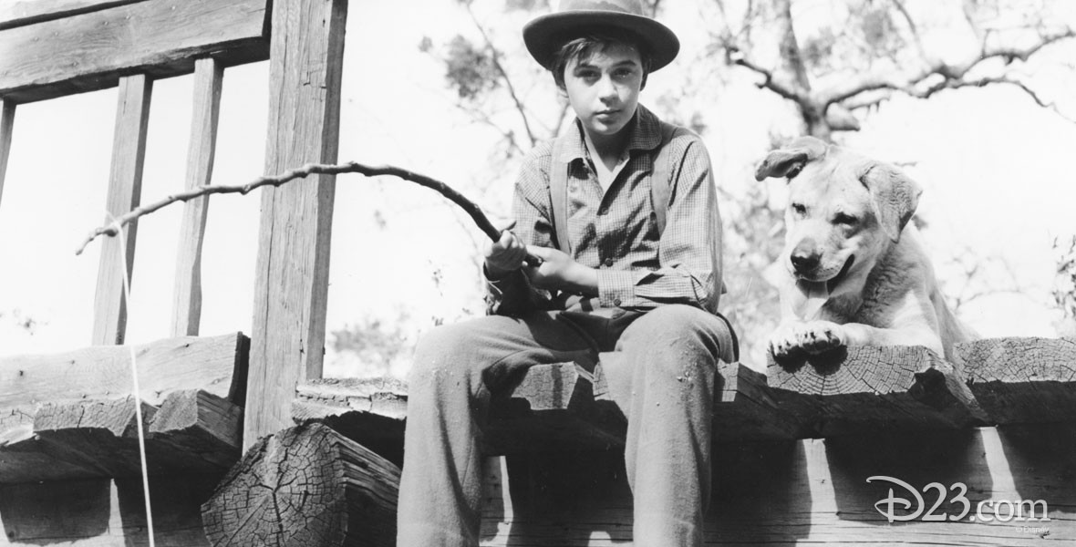 Actor Tommy Kirk in Old Yeller