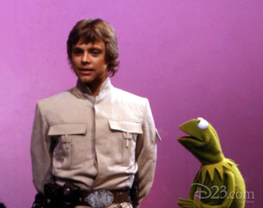 Kermit the frog and Mark Hamill as Luke Skywalker