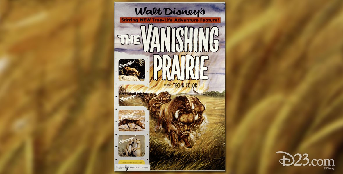 Poster from Disney Film The Vanishing Prairie
