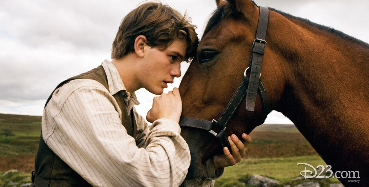 Photo from Disney Film The War Horse
