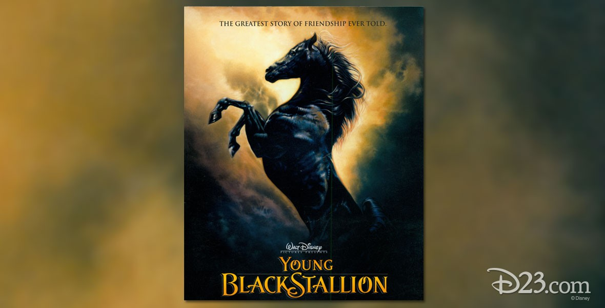 Poster for Disney Film Young Black Stallion