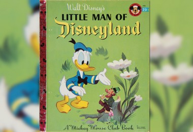 The Little Man of Disneyland Book Cover