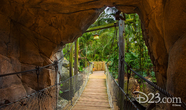 780w-463h_walking-at-disney-parks-4
