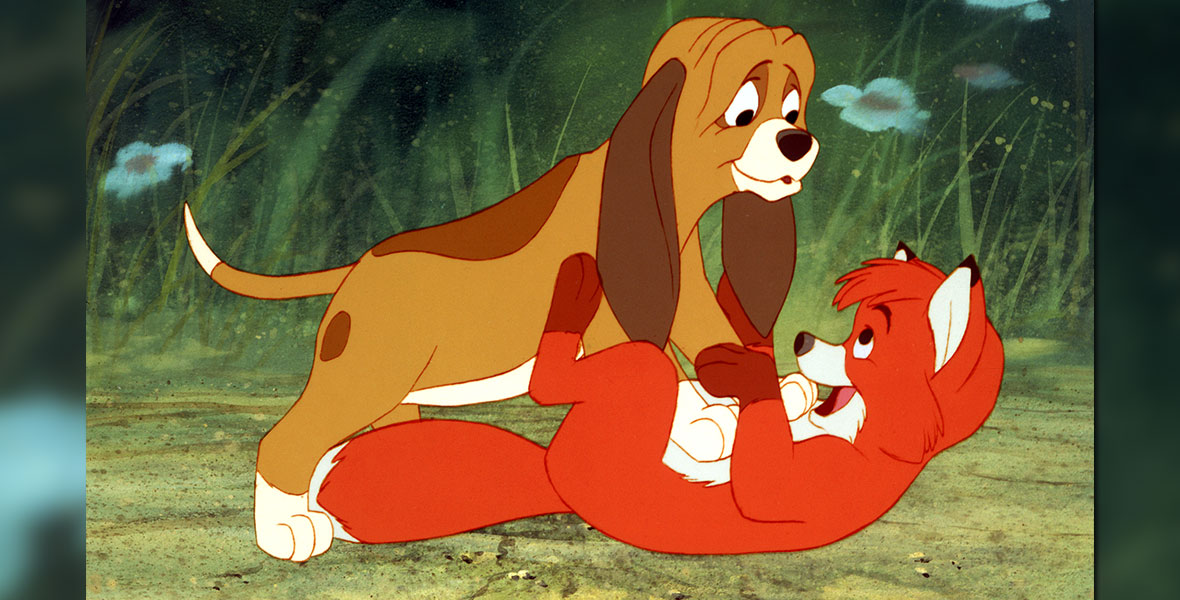 Did You Know 9 Furry Facts From The Fox And The Hound D23