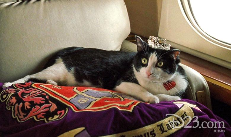 Louie wearing his crown - The Princess Diaries