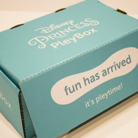 Disney Princess Pleybox