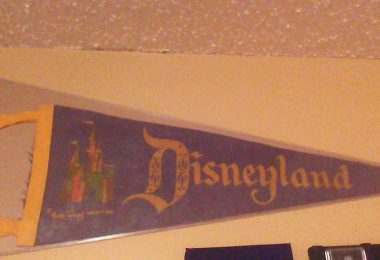 Disneyland pennant