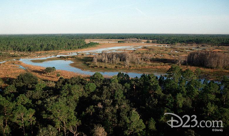 Disney Wilderness Preserve
