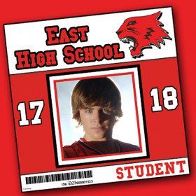 Wildcats school ID