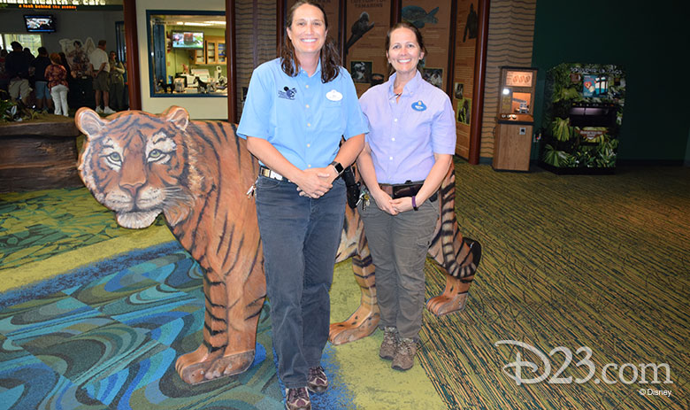 Disney's Animal Kingdom Hippo and Tiger Zoological Experts