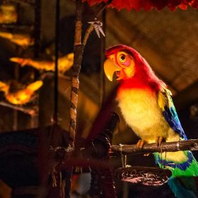 Jose from the Enchanted Tiki Room