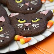 Binx the Cat Cookies