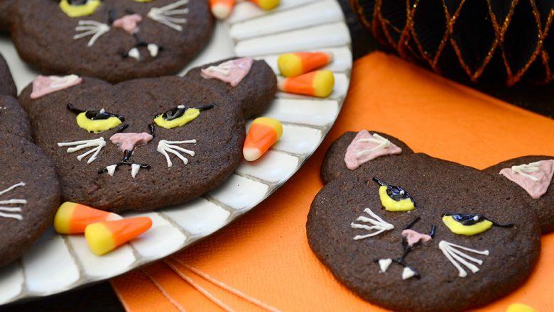 Binx the cat cookies recipe