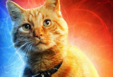 Captain Marvel's Paw-Some Pal