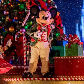 Walt Disney World Resort 2019 Holiday Season