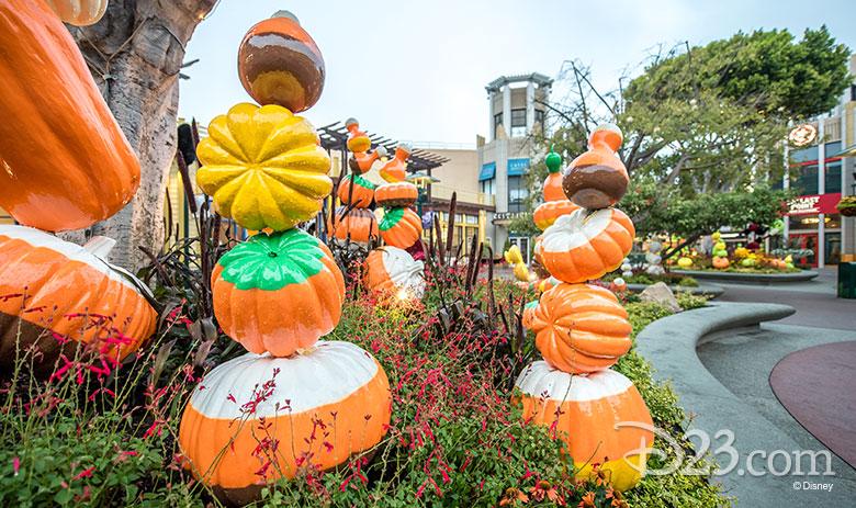 DTD Pumpkins - 4
