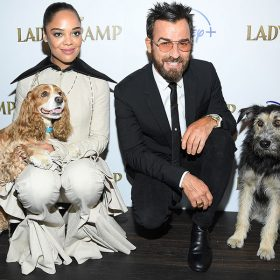 Tessa Thompson and Justin Theroux with the Lady and The Tramp Dogs