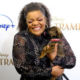 Why Yvette Nicole Brown Is Mutts About Disney+'s Lady and the Tramp