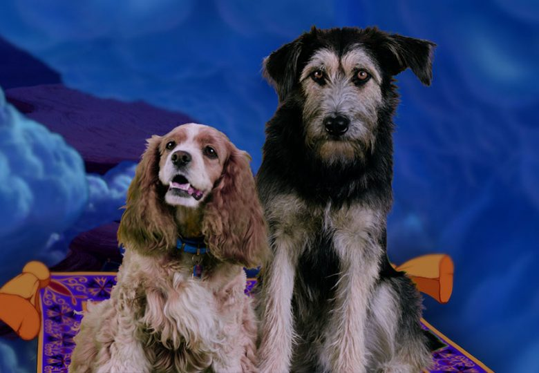 The Lady and the Tramp Dogs Recreate Romantic Disney Moments