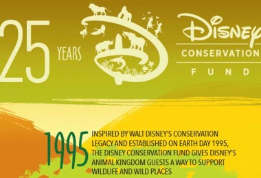 By the Numbers: 25 Years of the Disney Conservation Fund