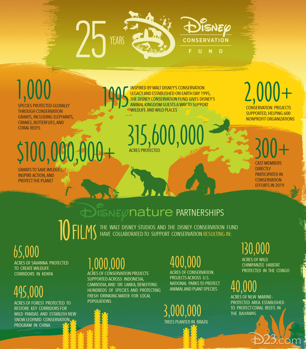 Disney Conservation Fund Infographic