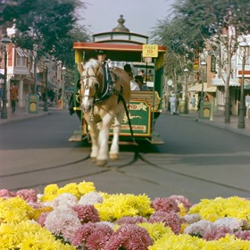 archives disneyland parades