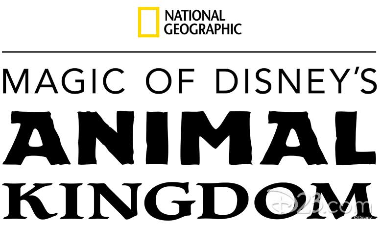 animal kingdom D+