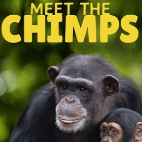 Swing Away with New Meet the Chimps Trailer—Plus More in News Briefs