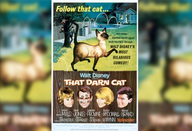OHHHH, D.C.! – That Darn Cat! Turns 55!