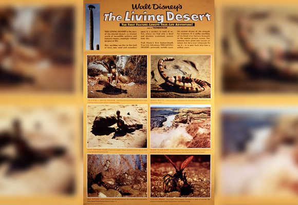 A Look Back at the Oscars®—The Living Desert