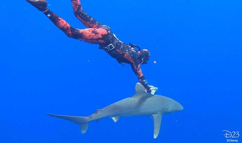 World's Most Dangerous Shark