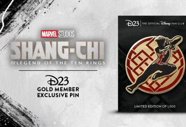 shang-chi pin